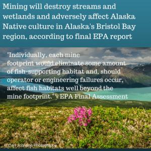 Mining could devastate Alaska's Bristol (1)
