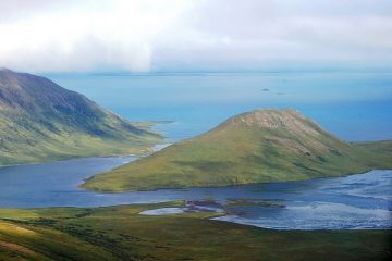 Nearly the world's entire population of black brandt use Izembek National Wildlife Refuge as an important migration stop.