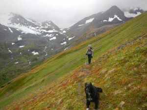 Brian and Tika heading into the wilds of Chugach National Forest. Photo: Eeva Latosuo