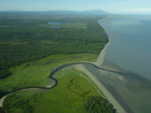 The mouth of the Chuitna River as seen by air. Photo by Brian Litmans.