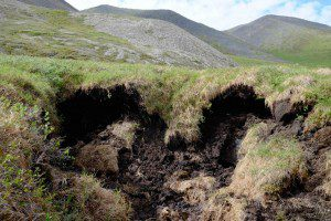 Thawing permafrost creates a sinkhole where the ground settles unevenly. Ice can be seen in the right hand edge of the hole. Photo courtesy of James Spitzer.