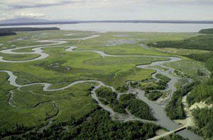Aerial view of the rich estuary of Eagle River Flats. Army Corps of Engineers photo.