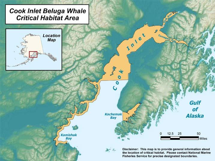 cookinletbeluga_critical habitat from ADFG