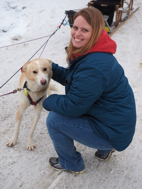 Jennie visiting with a sled dog during Fur Rendezvous.