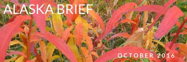 october-2016-banner