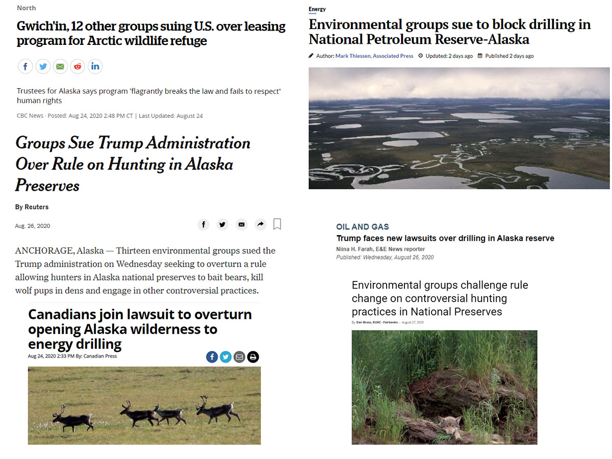 Collage of headlines about our August lawsuits. These 2020 lawsuits inform our 2020 view.
