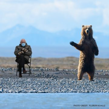 Bernie meme with great news for the Arctic Refuge