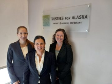Our legal team in our offices after oral argument in the Willow case.